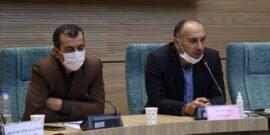 رئیس فدراسیون شنا، شیرجه و واترپلو ایران گفت: برای کسب سهمیه حضور در المپیک و مسابقات آسیایی در صورت برگزاری آنها تلاش می کنیم.