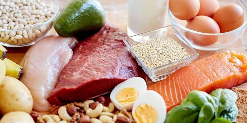 اگر ذخایر گلیکوژن کم باشد، ممکن است طی تمرین، بیش از ۱۵ درصد انرژی مصرفی از اکسیداسیون پروتئین تامین گردد، اگر ذخایر گلیکوژن کافی باشند، ممکن است ۵ درصد انرژی مصرفی از پروتئین تامین شود از طرف دیگر مصرف بیش از حد کربوهیدرات به منظور جلوگیری از مصرف پروتئین، روش عاقلانه ای نیست. بنابراین کمبود طولانی مدت پروتئین مصرفی می تواند منجر به افزایش تجزیه پروتئین و کاهش سنتز آن شود، به ویژه درموقعیت هایی که دریافت کالری محدود است، بنابراین مصرف ۱/۲ گرم پروتئین را برای هر کیلوگرم از وزن بدن توصیه میکنند که این میزان مصرف برای رشته های تخصصی ورزشی با توجه به شدت و مدت و نوع تمرین متفاوت است، پس یک ورزشکار باید اطمینان حاصل کند که پروتئین ۱۲تا ۱۵درصد از انرژی مصرفی او را تامین می کند. قهرمان هایی که تمایل دارند حجم ماهیچه های خودشان را افزایش دهند نیاز دارند، مقداری بیش از حد طبیعی خود پروتئین مصرف کنند، به مراتب این افراد اغلب به غذا های با پروتئین زیاد رو می آورند، و فراورده های پروتئینی و اسید های آمینه را جهت افزایش توده ماهیچه مصرف می کنند. یاریزان | نقش پروتئین ها در ورزش های استقامتی